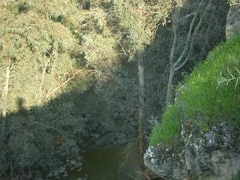 מסלולי טיולים - מפל דבורה חירת דבורה